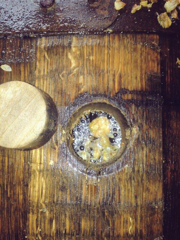 historische Biere